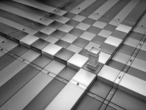 Movimientos de un grajo Imagen de archivo