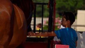 Movimientos del muchacho la grupa de un caballo marrón almacen de video