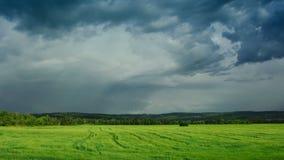 Moving облака кумулюса над полем, полным промежутком времени HD сток-видео