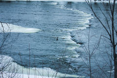 Moving река в зиме стоковое изображение