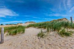Moving дюны паркуют около Балтийского моря в Leba, Польше Стоковые Изображения
