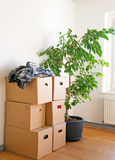 Moving. Many stacked moving boxes in a room Stock Photos