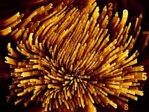 Энергия Moving чисел Стоковое фото RF