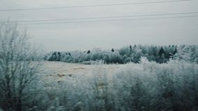 Moving along beautiful landscape of frozen trees covered in snow. Cold winter cloudy day stock video footage