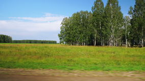 Moving along a scenic agricultural fields (POV). POV: Moving along a scenic agricultural fields and forest in Altai, Russia stock video footage