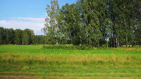 Moving along a scenic agricultural fields (POV). POV: Moving along a scenic agricultural fields and green forest in Altai, Russia stock video footage