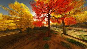 Moving autumn forest Royalty Free Stock Photography