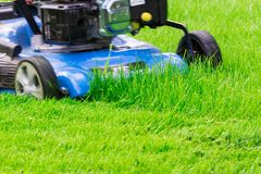 Moving Blue Lawnmover Cutting Green Grass Royalty Free Stock Photos