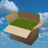 Moving Box. Royalty Free Stock Image