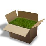 Moving Box. Stock Image