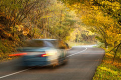 Moving car on the road in autumn nature Stock Image