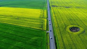 Moving cars on a fast road between rape fields, Poland stock video