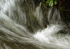 Moving close tearing water in the mountain stream. Poland.Bieszczady mountins.Moving close tearing water in the mountain stream.Tearing foamed water sailing Royalty Free Stock Images