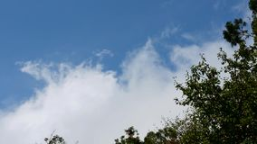 Moving clouds and blue sky. Beautiful blue sky and white clouds moving with sunlight stock footage