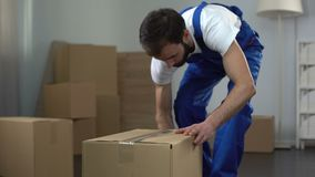 Moving company worker carefully packing and carrying boxes, quality services