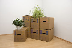 Moving Day Stock Photography