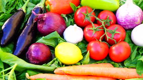 Moving different vegetables and citrus fruits on green grass stock video footage