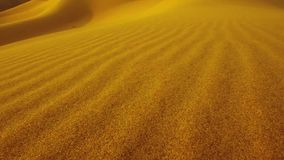 Moving on dune sand stock footage