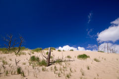 Moving dunes at the Baltic Sea Royalty Free Stock Photography