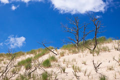 Moving dunes at the Baltic Sea Stock Photos