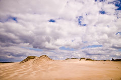 Moving dunes at the Baltic Sea Stock Photography