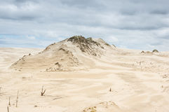 A moving dunes Royalty Free Stock Photo