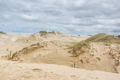 A moving dunes Royalty Free Stock Image
