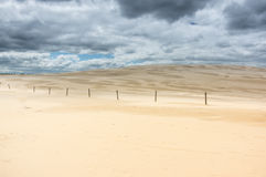 A moving dunes Royalty Free Stock Photography