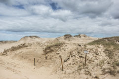 A moving dunes Royalty Free Stock Images