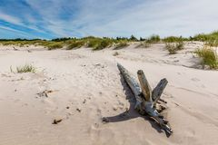 Moving dunes park near Baltic Sea in Leba, Poland Stock Image