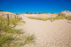 Moving dunes park near Baltic Sea in Leba, Poland Royalty Free Stock Images