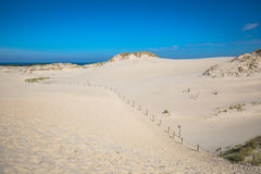 Moving dunes in the Slowinski National Park, Poland Stock Image