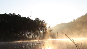 Moving fog near lake camping in the morning with sunlight stock footage