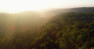 Moving forward over forest in sunset or sunrise summer day with sun flare.Europe Italy outdoor green nature scape wild stock footage