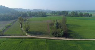 Moving forward over green fields and gravel paths in summer day.Europe Italy outdoor green nature scape aerial stock video