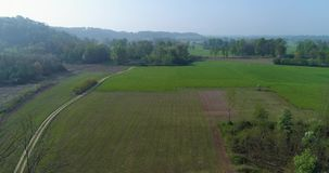 Moving forward over green fields and gravel paths in summer day. Europe Italy outdoor green nature scape aerial stock footage