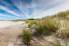 Moving дюны паркуют около Балтийского моря в Leba, Польше Стоковая Фотография RF