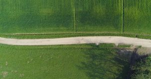 Moving overhead over gravel paths and green fields in summer day. Europe Italy outdoor green nature scape aerial stock footage