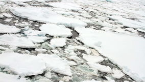 Moving through pack ice field, Antarctica stock video