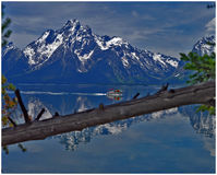 Moving Reflections. Jackson Lake in Grand Tetons National Park Royalty Free Stock Photo