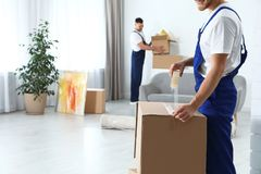 Moving service employee sealing cardboard box with adhesive tape in room. Closeup stock photo