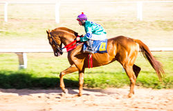 moving shot jocky and horse racing sport Stock Photography