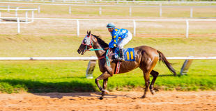 moving shot jocky and horse racing sport Stock Images