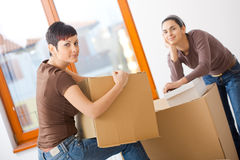 Moving to new home royalty free stock photo
