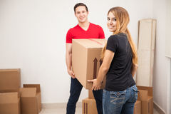 Moving to their new home Stock Images