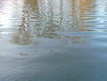 moving vatten Royaltyfri Fotografi