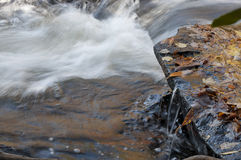 Moving water fall leaves Royalty Free Stock Photo