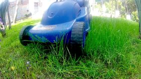 Mow lawn grass cutter in yard stock video