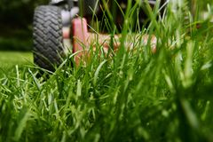 Mow lawn low angle of lawnmower cutting grass. Low angle close up of lawnmower cutting fresh green grass royalty free stock image