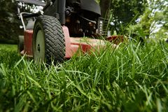 Mow lawn low angle of lawnmower cutting grass. Low angle close up of lawnmower cutting fresh green grass Royalty Free Stock Photo